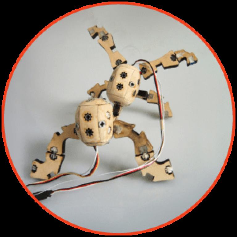 wooden-crawler